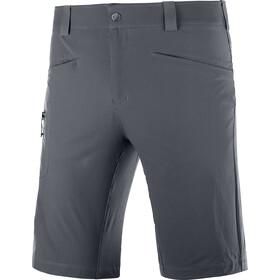 Salomon Wayfarer Shorts Men, grijs
